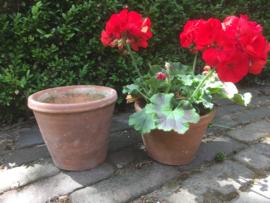 Antieke terracotta pot