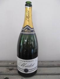 Leuke champagnefles magnum