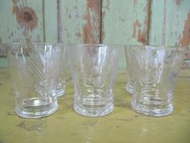 Set van  5 borrel glaasjes