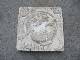 Betonnen tegel sterrenbeeld Vissen