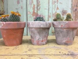 Antique French terracotta flower pots