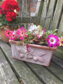 Terracotta bloembakje*