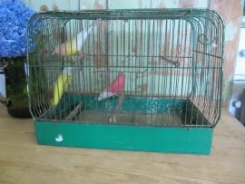 Brocante green metal bird cage