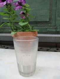 Gebruiks glas