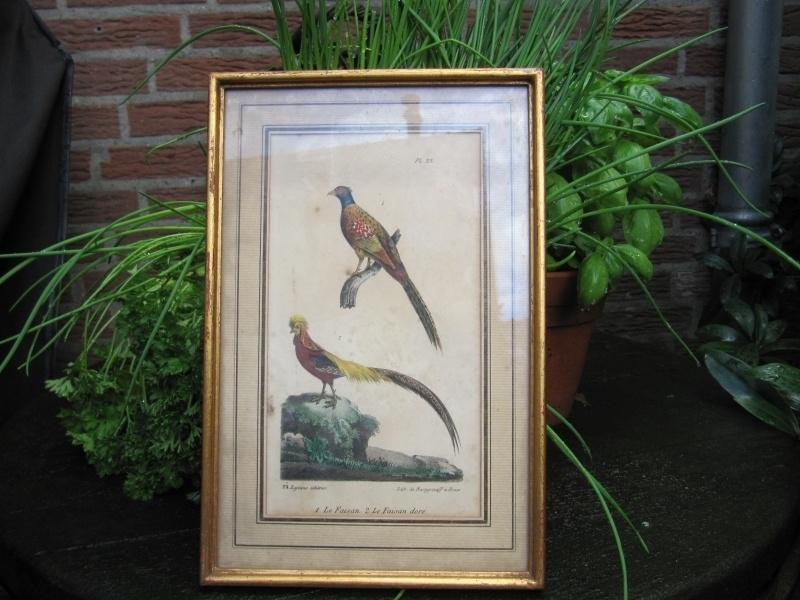 Mooie litho van Th. Lejeune en de Burggraaff uit 1833