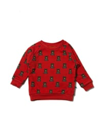 Sweatshirt Little Green Radicals, Mountain Bears 104-110 of 116-122