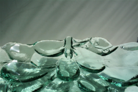 Glazen Schaal - Druiventros
