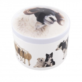 Prachtig 3D blik met boerderijdieren, gevuld met handgemaakte fudge
