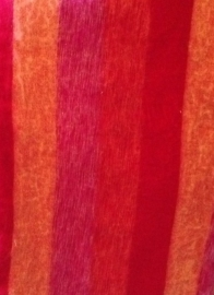 Nepal #12 XL Streep Oranje