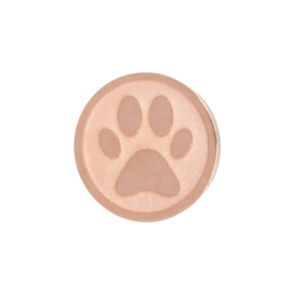Dog Foot. Rosé