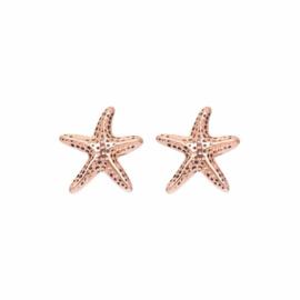 Sea Star , Rosé