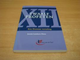 Twaalf profeten, een Drentse vertaling - Lambers-Niers, Jennie