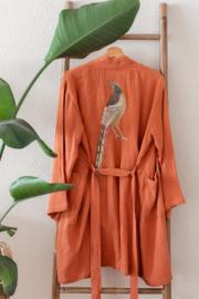 The pheasant in rust