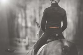 Dutchtophorses