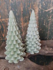 Kerstbomen kaars Thijm