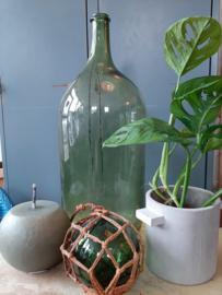 Hoge groene Franse fles