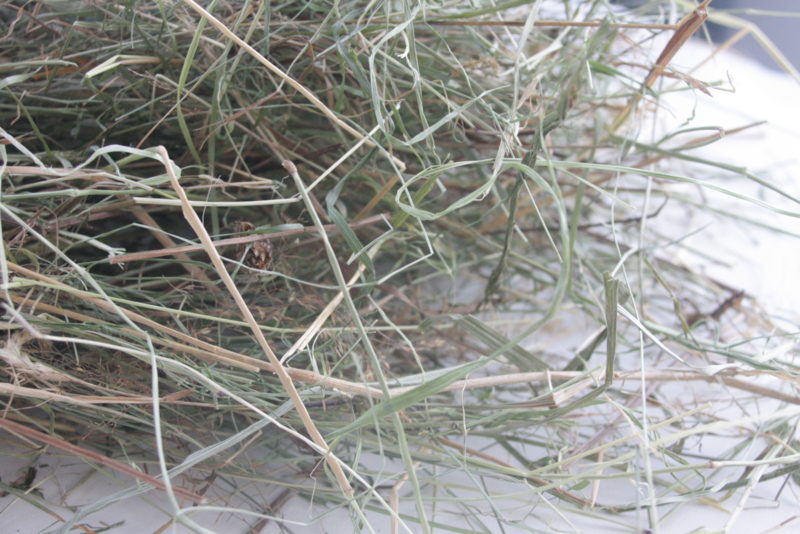Hooi & Grassoorten | Prachtig groen weidehooi | Een 'plakje'