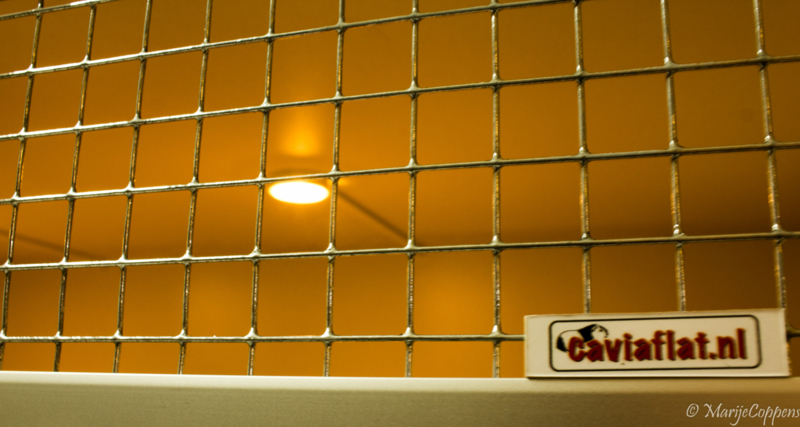 Caviameubel | Extra uitbreiding | LED Verlichting | 4 lampjes
