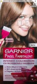 Garnier Pinsel Farbtalent 6.0 Donkerblond