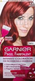 Garnier Pinsel Farbtalent 6.60 Intensief Rood