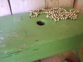 Groen krukje VERKOCHT