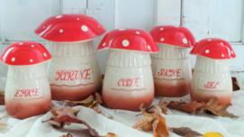 Kruidenpotten 'paddenstoel' VERKOCHT