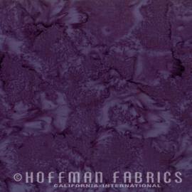 Hoffman 1895-34 Eggplant