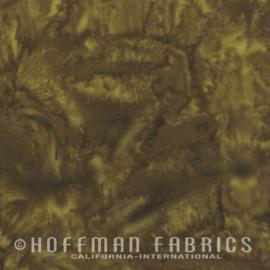 Hoffman  1895-058 Earth