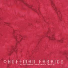 Hoffman 1895 005 Red