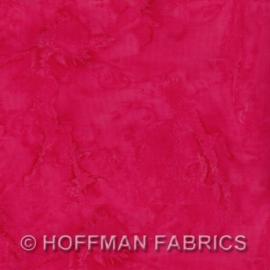 Hoffman 1895 337 Shirley