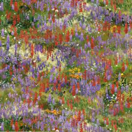 Landscape Medley - Wildflowers Multi