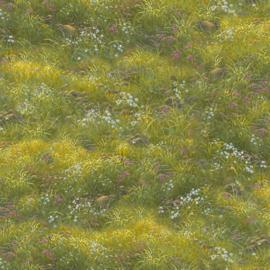 Noah,s  Ark - Meadow Green