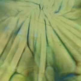 Tonga Batik B5812 Amazon