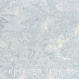 Hoffman 1895 - 176 - Ice