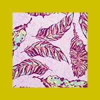 Free Spirit Lilac Feather Flock