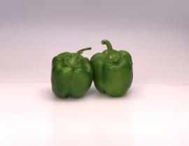 Groene ronde paprika per 100 gr