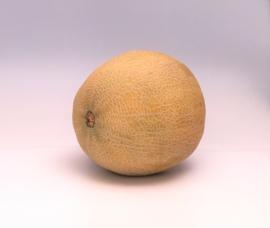 Galia meloen uit Pyrgos  (Gem. gewicht 2 kg)