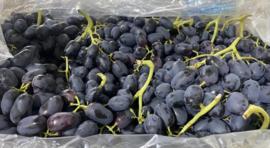 zwarte druiven, 1 kg