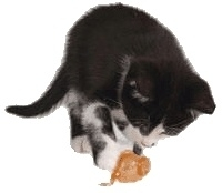 PETSTAGES CATNIP STUFFER MOUSE