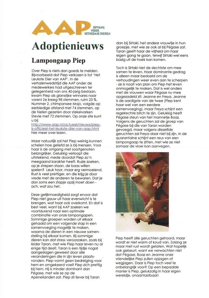 AAP-adoptienieuws2.jpg