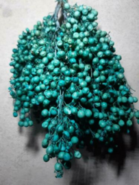 Bos Gedroogde Pepperberries Peperbessen Turquoise
