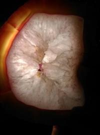 Agaatschijf Agaat Schijf Kristal Roze - Edelstenen
