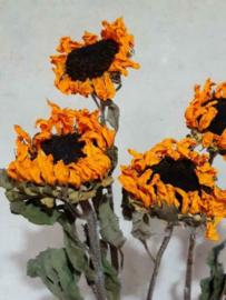 Gedroogde Zonnebloem Mini Oranje Bos Droogbloemen 5st.