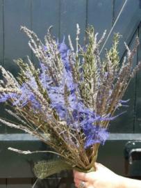 Gemengd Droogboeket Droogbloemen Kruiden Lavendel Rozemarijn