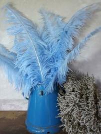 Struisvogelveer Old Blue - Verweerd Blauw 60 cm