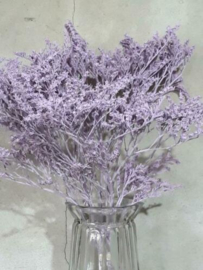 Toef Gedroogde Droogbloemen Bos Statice Tatarica Frosted Lila