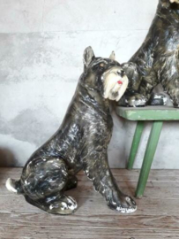 Oude Vintage Gipsen Beeld Hond Schnautzer