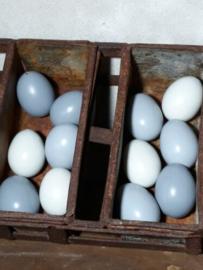 Set van 12 Grijze Paaseieren Kippenei Ei Grijs