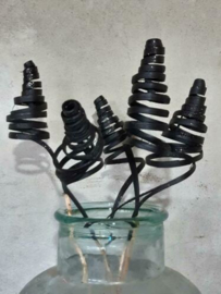 Gedroogde Bos Cane Cone Palm Droogbloemen Spiraal Zwart 5st.