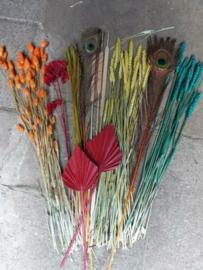 Gemengde Bos Droogbloemen Pakket Mix DIY Rood Oranje Turkoois